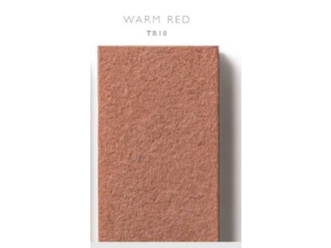 Cedral terrace 3150x175 x20mm tr10 rouge briq